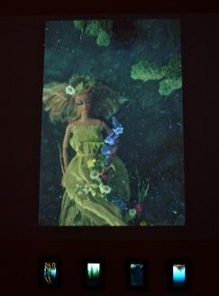 Ophelia installation photo
