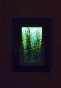 Opelia video installation photo